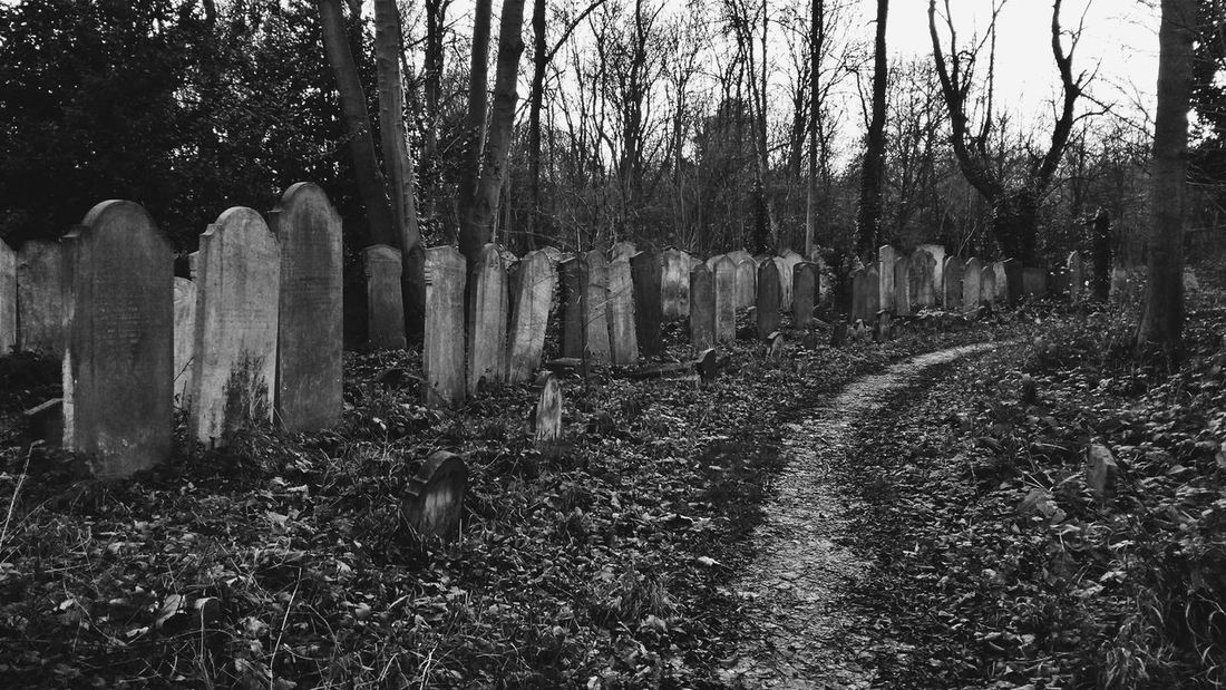In your dark pavilion ... *** ... Graveyard Beauty Cemetery Photography фотография Abandoned Samsungphotography Samsung Galaxy S4 Gothic VSCO Graveyard Collection Derelict Grave Vscocam Graveyard Decay Abandoned Places Cemetery Dark Pavilion черно-белое Black And White Bnw Bw Black & White Memories Cemetery_shots