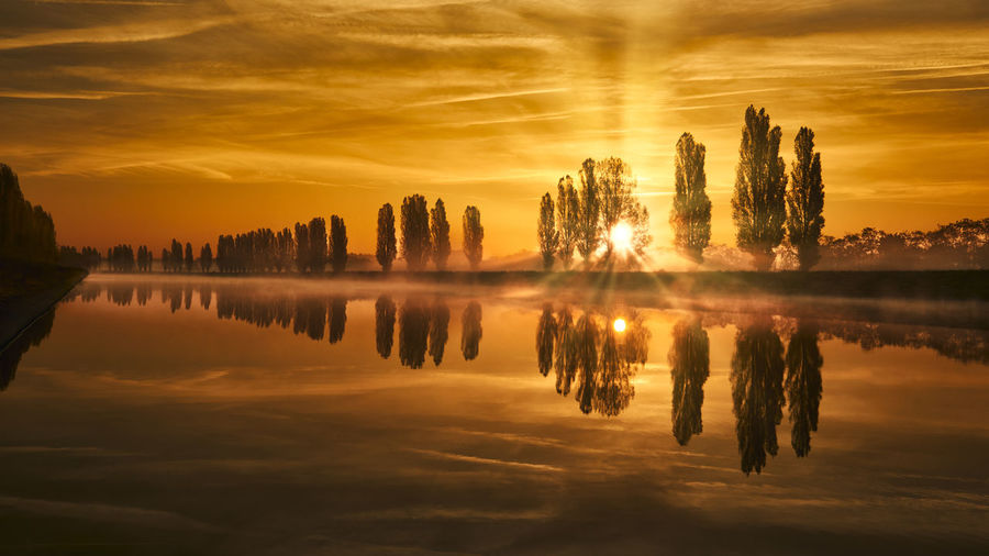 Sunny morning Reflection Sky Water Sunset Orange Color Tranquility Beauty In Nature Cloud - Sky Tranquil Scene Scenics - Nature Waterfront No People Nature Idyllic Symmetry Sun Silhouette Reflection Lake Tree Sunrise