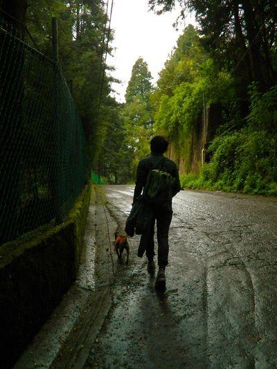 A New Beginning Tree Headwear Full Length Men Pets Helmet Empty Road