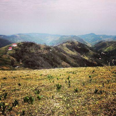 Trabzon Beşikdüzü  Kabalak Dagmahalle yayla karadeniz bahar blacksea country village outdoor trekking plateau moody mood instamood instagood instagram instahub jj igers igersturkey jj_forum instafun