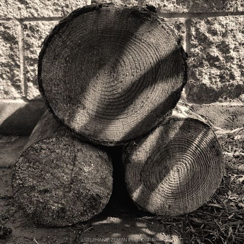 Life Rings Stack Wood Wood - Material Chopped Wood Sunlight Day Close-up Real People Nature High Angle View Outdoors Still Life Pattern Solid