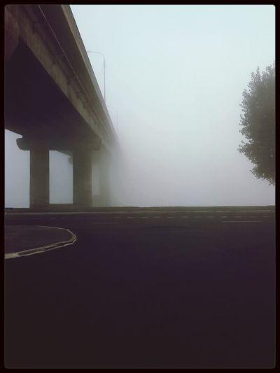 The Calmness Within утро в Мозыре ?