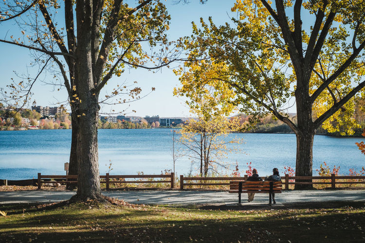 Mid Distance View Of People Sitting At Park By Lake