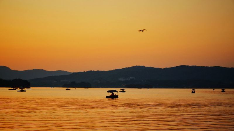 Sunset Animals In The Wild Bird Silhouette Mountain Flying Landscape Nature Outdoors Beauty In Nature Boat Mountain Range Travel Warm Glow Vacations Lake View Light And Shadow Hangzhou,China West Lake, Hangzhou Yellow China View Summer Travel Destinations Scenics Lake