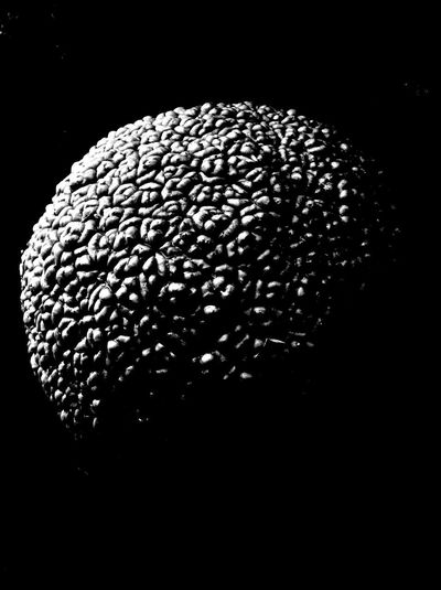 Black Texture Black And White Seed Nature Close-up Nature Beauty Beauty In Nature Relief