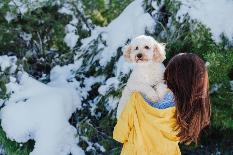 Rear view of woman with dog during winter