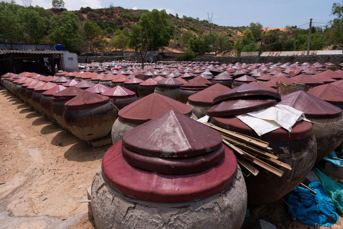 Tradition fish sauce in Phan Thiet, Vietnam BINH THUAN Day Fish Sauce Handmade Large Group Of Objects Nature No People Outdoors Phan Thiet Specialties Tradition Tree Vietnam Water