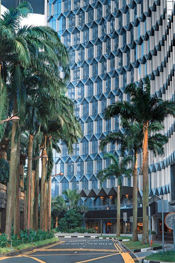 Built Structure Architecture Building Exterior Tree Plant Building City Outdoors Office Building Exterior Travel Destinations Modern Growth Day Green Color Pattern Nature No People Office Tourism Street