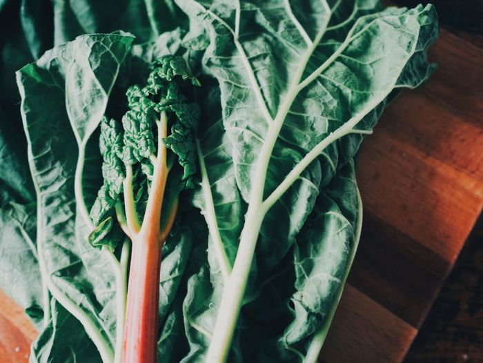 Vegetable Food And Drink Healthy Eating Food Green Color Indoors  Leaf Freshness No People Table Close-up Day Veins In Leaves Veins Details Detail Beauty In Nature Full Frame Green Color Rhubarb Rhubarb Leaves Rhubarb Stalk