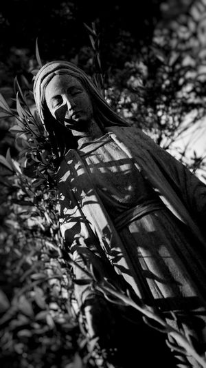 Blackandwhite Stone Statue California Los Olivos Taking Photos Photography