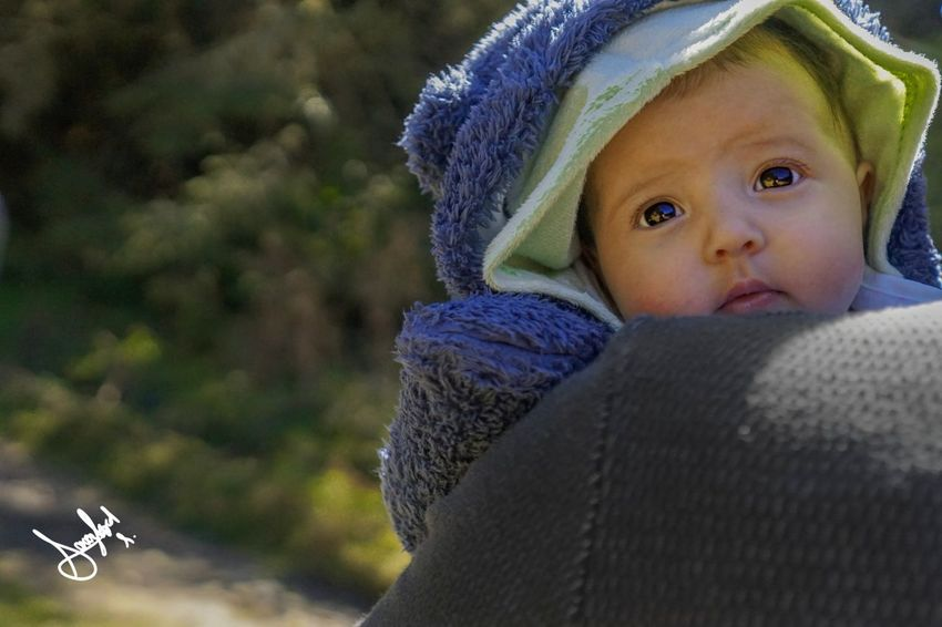 New Born Photography New Born Baby Portrait Childhood Focus On Foreground Looking At Camera People Babies Only Day Headshot Warm Clothing One Person Outdoors