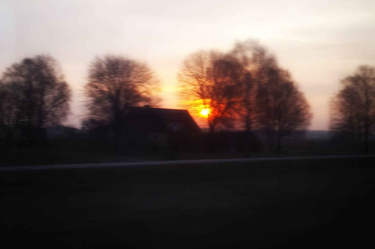 tree, nature, no people, beauty in nature, road, sunset, scenics, tranquility, tranquil scene, outdoors, silhouette, sky, landscape, bare tree, day