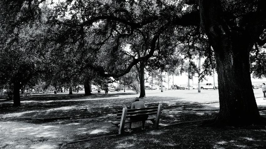 A Day Out Black And White Taking Photos Parks Relaxing