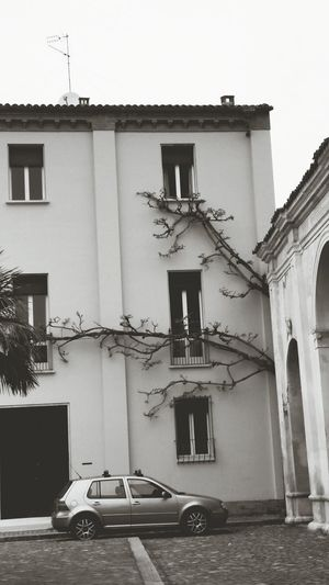 Ravenna, Italy Ravenna Tree Outdoors No People Building Exterior Nature Built Structure Black & White Cityscape