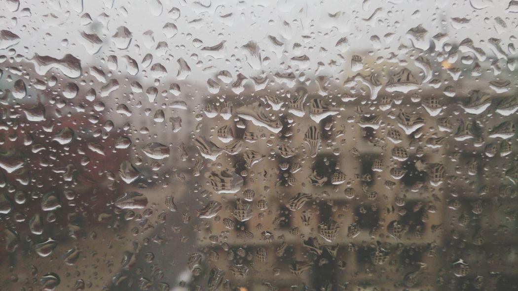 Rain Pluviophile Getting Inspired Calm