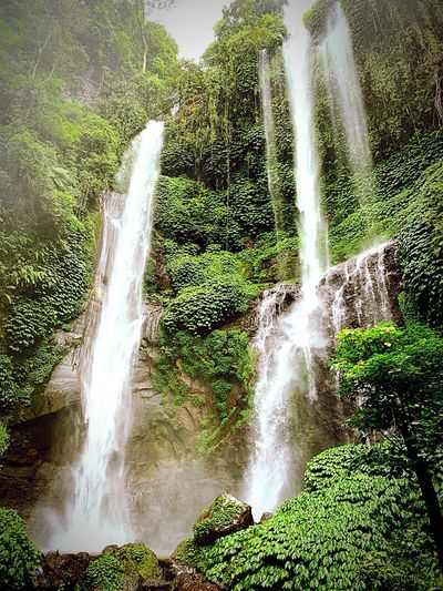 Waterfall Water Motion Nature Splashing No People Long Exposure Spraying Day Plant Green Color Flowing Water Tree Sunlight Waterfall Beauty In Nature Scenics - Nature Outdoors