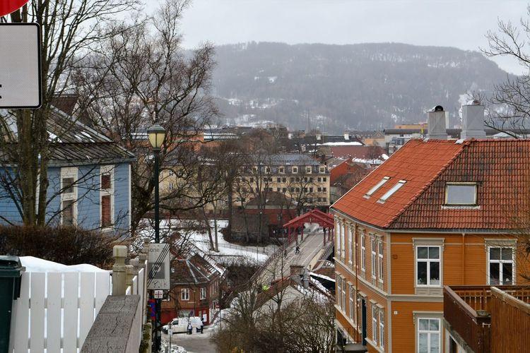 Winter Norway Houses Trondheim Streetphotography Street Gamlebybro