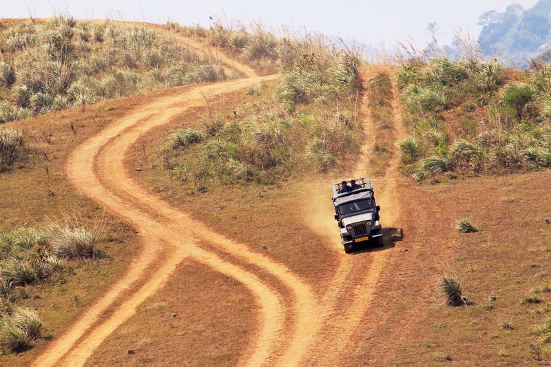 Hill Downhill 4x4 Offroad Landscape Car Jipe Driving Driving Down The Mountain Landscape_Collection Landscape_photography Tracks Road Popular Popular Photos Traveling Travel Photography Travel EyeEmBestPics Finding New Frontiers The Drive in Kerala Thekkady India MISSIONS: The Great Outdoors - 2017 EyeEm Awards The Photojournalist - 2017 EyeEm Awards Mix Yourself A Good Time Connected By Travel Perspectives On Nature The Great Outdoors - 2018 EyeEm Awards The Traveler - 2018 EyeEm Awards