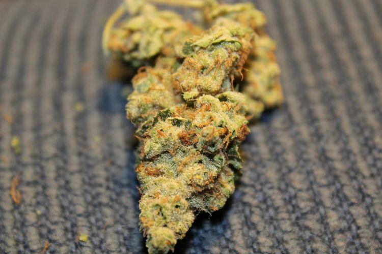 Close-up Dank Healthcare And Medicine Marijuana - Herbal Cannabis Medical Cannabis Medical Marijuana No People Nug OG Diesel Red Hairs Smoke Weed SMOKE WEED EVERYDAY