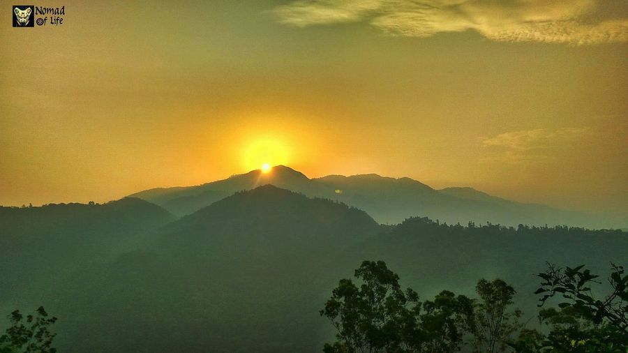I think i am falling in love with sunrise Mountain Tree Sunset Sky Nature Outdoors Sun Forest Landscape No People Mountain Range Beauty In Nature Day Transportation Travel Photography Caferacersofinstagram Tree Area Cloud - Sky Green Color Sunrise Sunrise_Collection Epic Golden Skyscraper Beauty In Nature