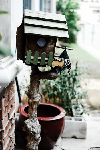 Close-up of birdhouse on tree by building