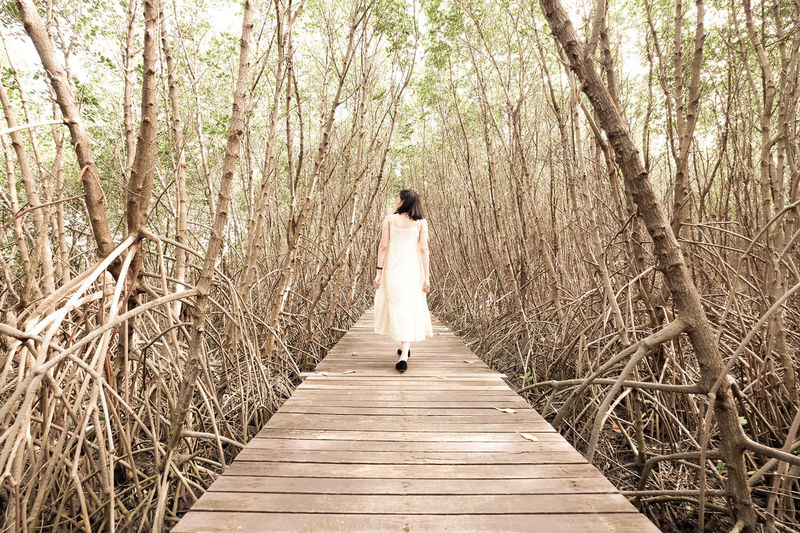 A girl into the wood. Wedding Dress Bride Wedding Women Nature Young Adult One Point Perspective Perspective One Person Into The Woods Wood Outdoors Alone Tree Rear View Full Length Young Women EyeEm Selects