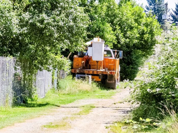Bucket truck down the lane 9762717 Bucket Truck Laneway Trees Collection