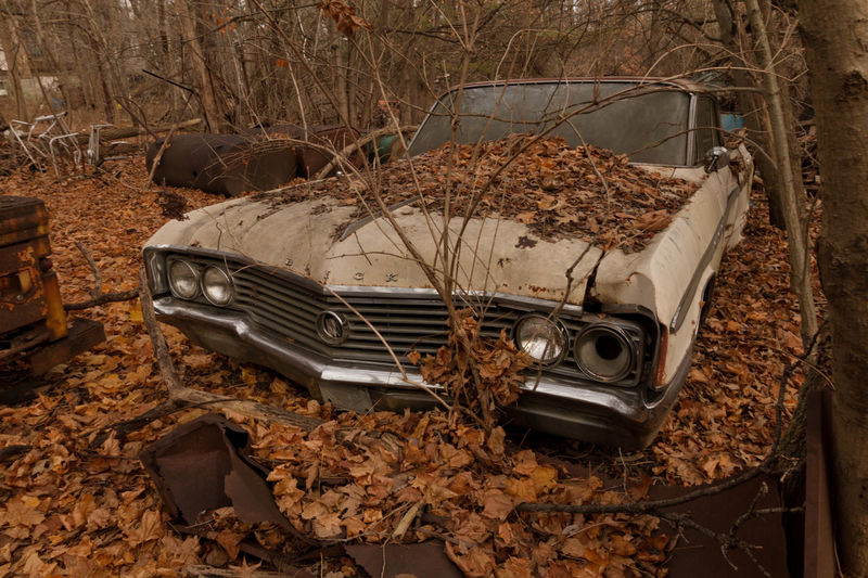 Abandoned classic Buick Car Abandoned Rusty Decay Abandoned Places Abandoned & Derelict Demolitionbyneglect Eyeem Abandonment Forgotten Places  EyeEm_abandonment EyeEmBestPics Junkyard Discoveries Car Graveyard Abandoned Cars