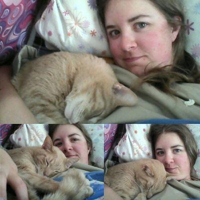 the best Snugglebug Meow Catladyproblems Snuggleslut cantsleepwithouthim
