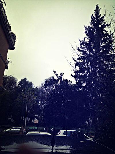 Rainig Autumn Sunday Rain