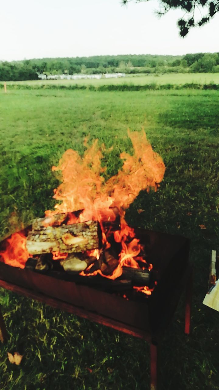 burning, fire - natural phenomenon, fire, flame, heat - temperature, nature, environment, no people, plant, day, outdoors, land, motion, field, wood - material, wood, barbecue, tree, glowing, log
