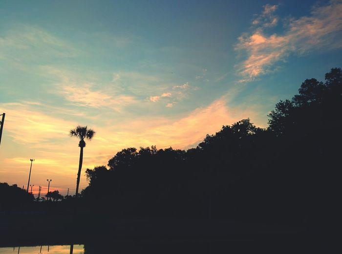 Sunrise this