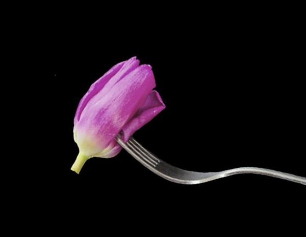 Dark Pink By Motorola Abstract Foodphotography Flower