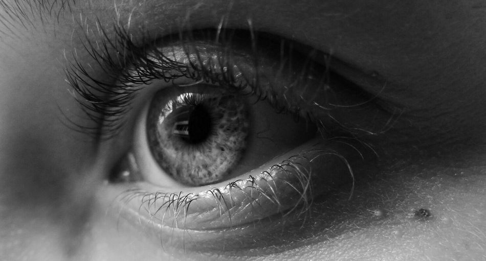 Human Eye Eyelash Human Body Part One Person Real People Eyesight Eyeball Human Skin Iris - Eye People EyeEmNewHere The Week On EyeEm