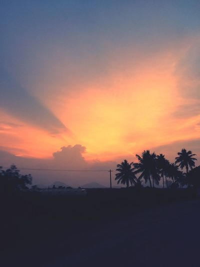Coconut Trees Sunset Hills And Valleys Village Photography Indian Mindblowing Scenic View Mood Gets Refreshed Majestic Calm Beauty In Nature