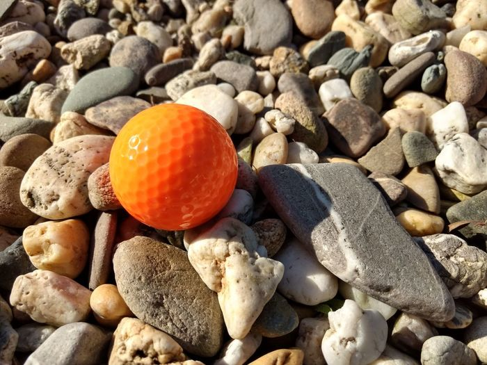 Close-up of orange and pebbles on stones