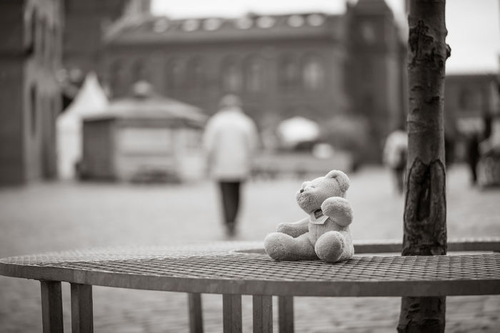 Vergessen Berlin Spielzeug Teddy Bank Black And White Day Outdoors Streetphotography