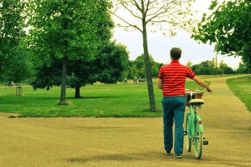Hyde park. Hyde Park Green Garden Park Man Bike Bicycle Patterns Stripes London Unitedkingdom Afternoon