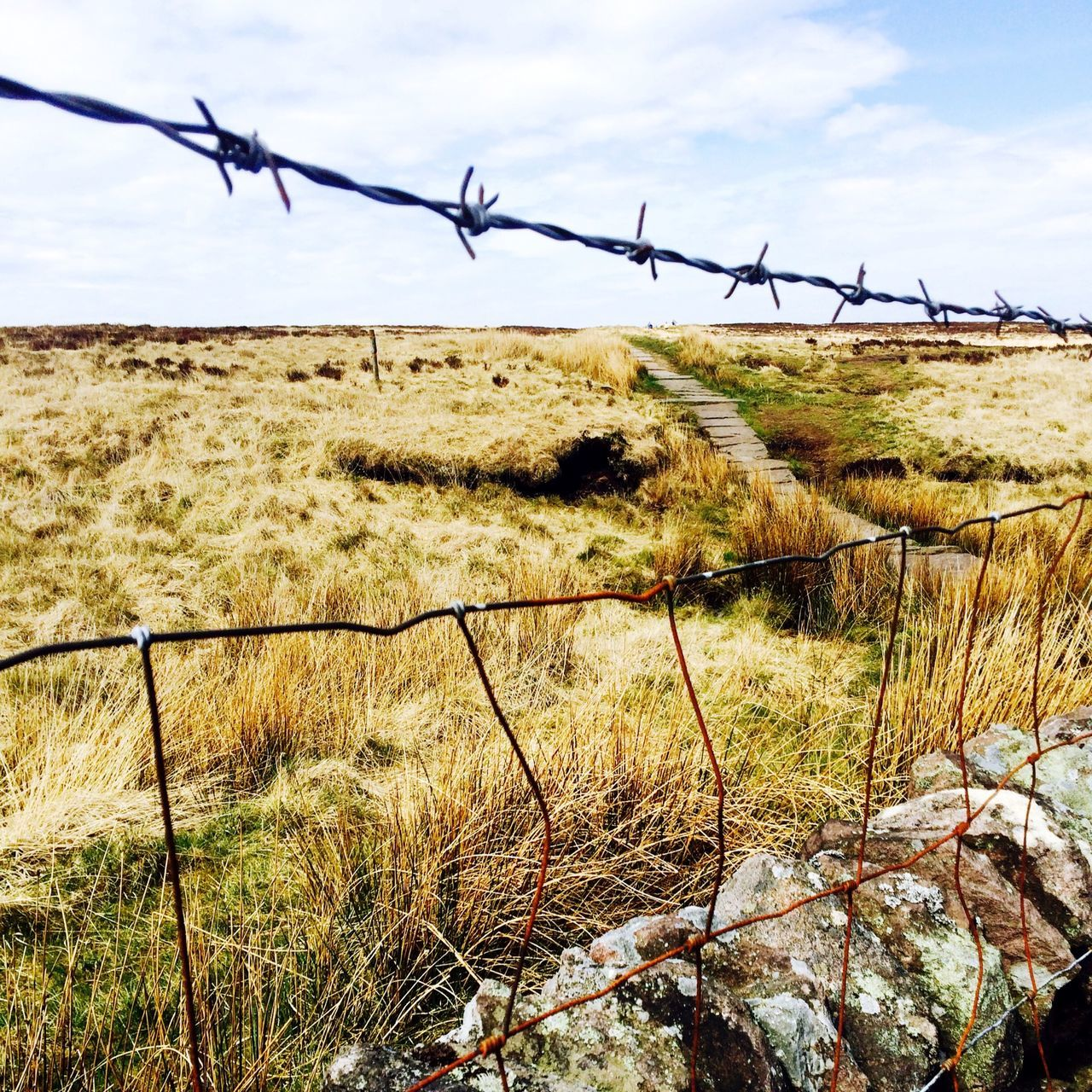 CLOSE-UP OF BARBED WIRE ON FIELD AGAINST SKY