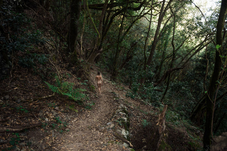 Into the Woods Linas Was Here Nature Trees Female Forest Girl Jungle La Gomera, Canary Islands Moody Nature Naked_art Nude_model Path In Nature Woods A New Beginning