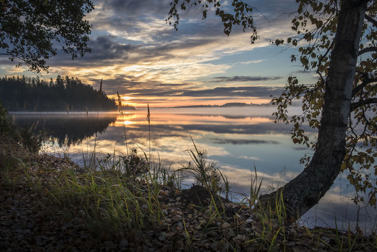 Scenic landscape with sunrise at autumn morning in southern Finland Atmospheric Mood Autumn Beauty In Nature Birch Cloud - Sky Colors Fall Idyllic Lake Landscape Nature Outdoors Peaceful Reflection Reflection Lake Scenery Scenics Sky Sunrise Sunset Tranquil Tranquil Scene Tranquility Tree Water