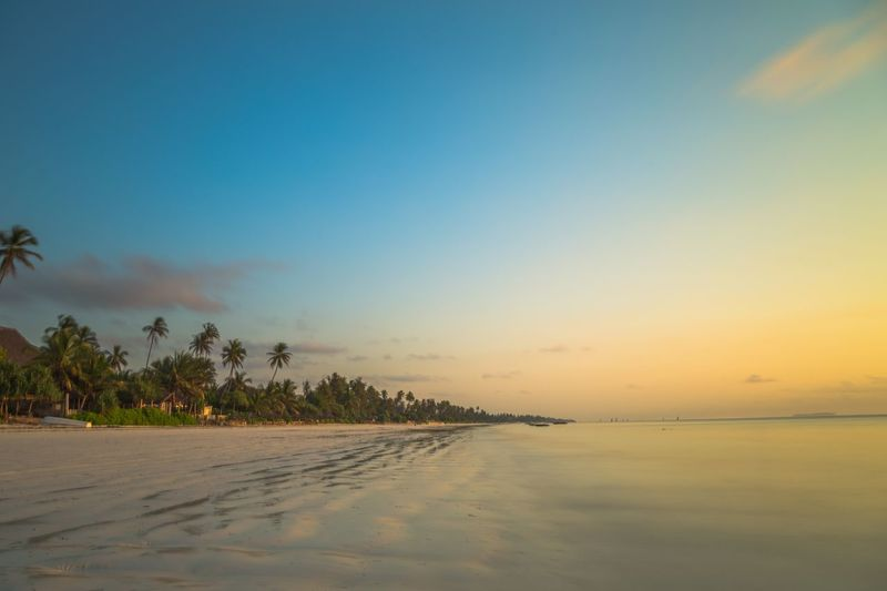 Beach Sea Palm Tree Sunset Landscape Tropical Climate Vacations Water Idyllic tranquil scene Travel Destinations Sky Reflection Tree