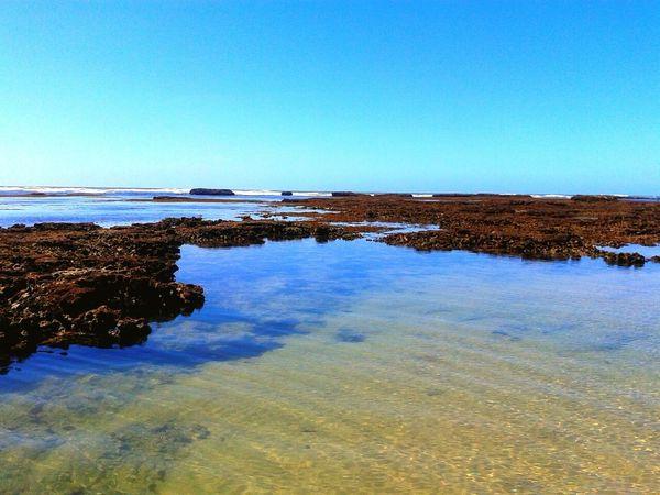 Piscinas naturais... Praia do Paiva Pernambuco Brasil