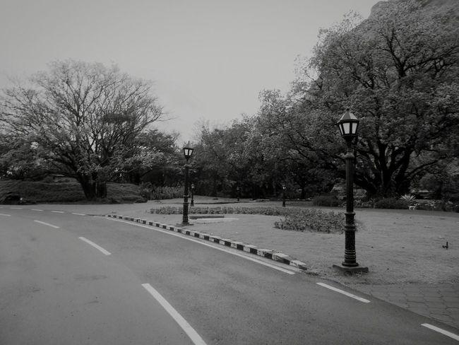 On The Road Mumbai Showcase : January Showcase:January Mobile Photography Followme Road Roadtrip Black & White EyeEm Gallery Foggy Morning My Year My View