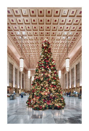 And Happy Holidays to all!! 30th Street Station Architecture Building Ceiling Christmas City Composite Holiday Lights Philadelphia Reflection Station Tinsel  Train Travel Tree