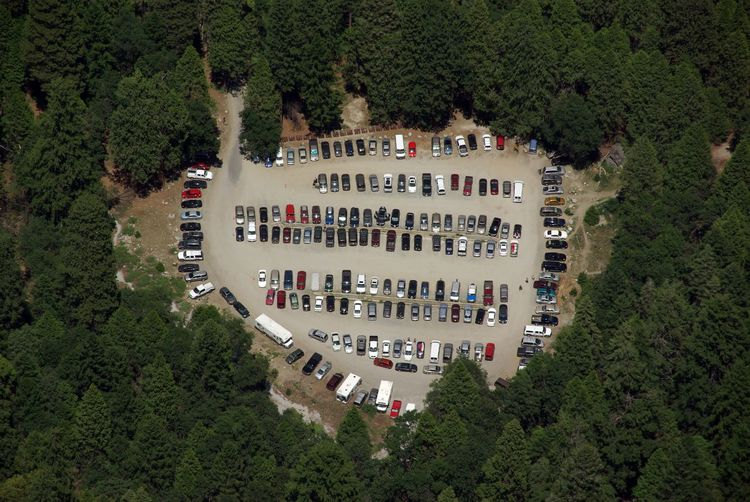 Parking lot in the forest Tree High Angle View Transportation Green Color Outdoors Mode Of Transportation Motor Vehicle Forest Car Park Parking Lot Parking Area Parking Site Cars Bird's Eye View