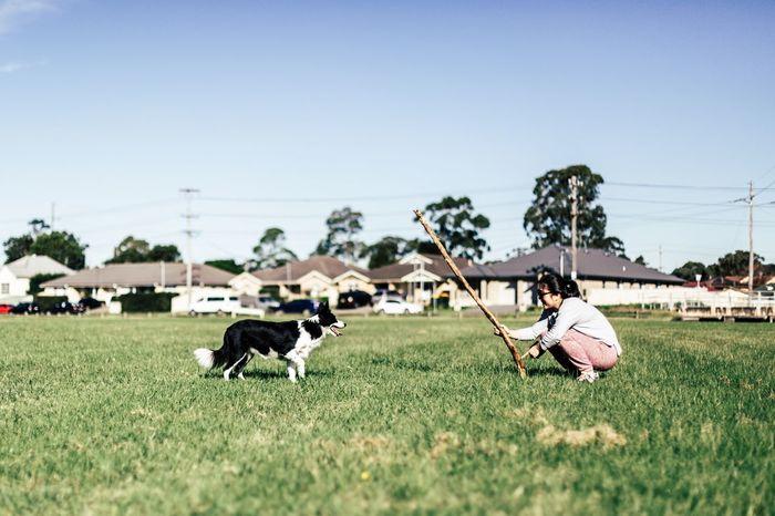 Field Grass Domestic Animals Animal Themes Outdoors Mammal Playing Dog Love Dogs Of EyeEm Dogslife EyeEmNewHere