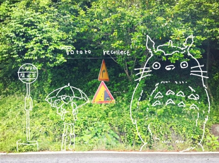 Totoro Forest