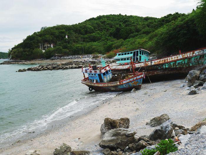 เรือประมง Water Nautical Vessel Transportation Tree Mode Of Transportation Plant Nature