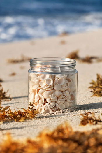 Seashells In Jar On Sand At Beach